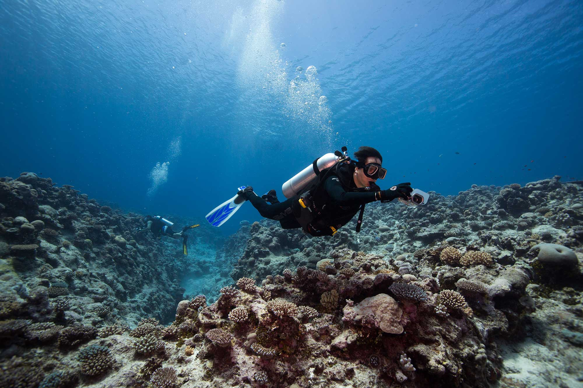 Buccaneer-Adventures-Niue-Dive
