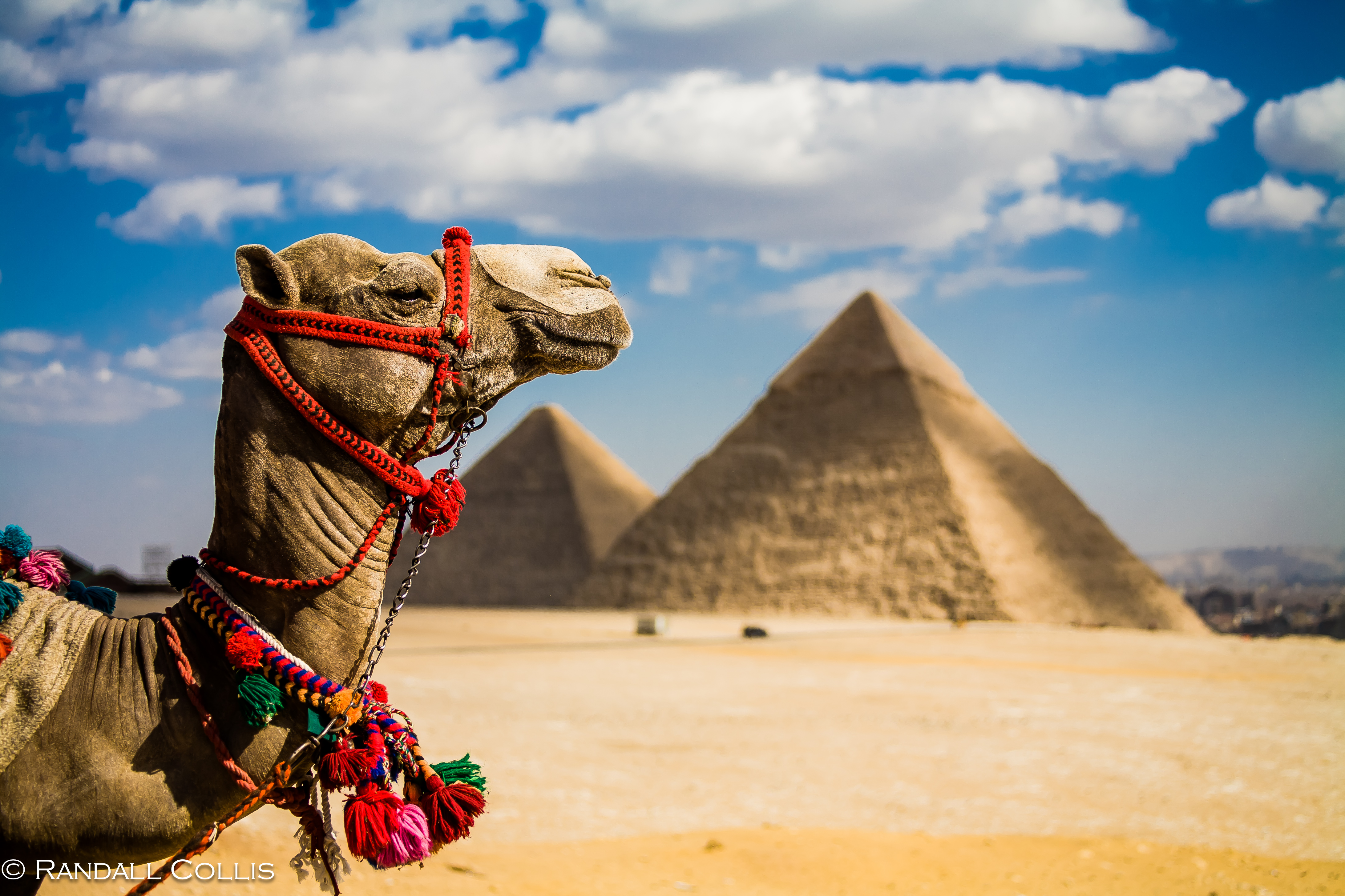 visit egypt Find out the best time to visit egypt with details on climate, seasons and events from audley specialists.