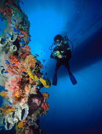 Diver on wreck in Truk Lagoon, Micronesia