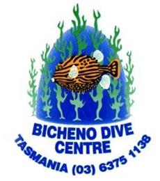 bichenologo-prepared