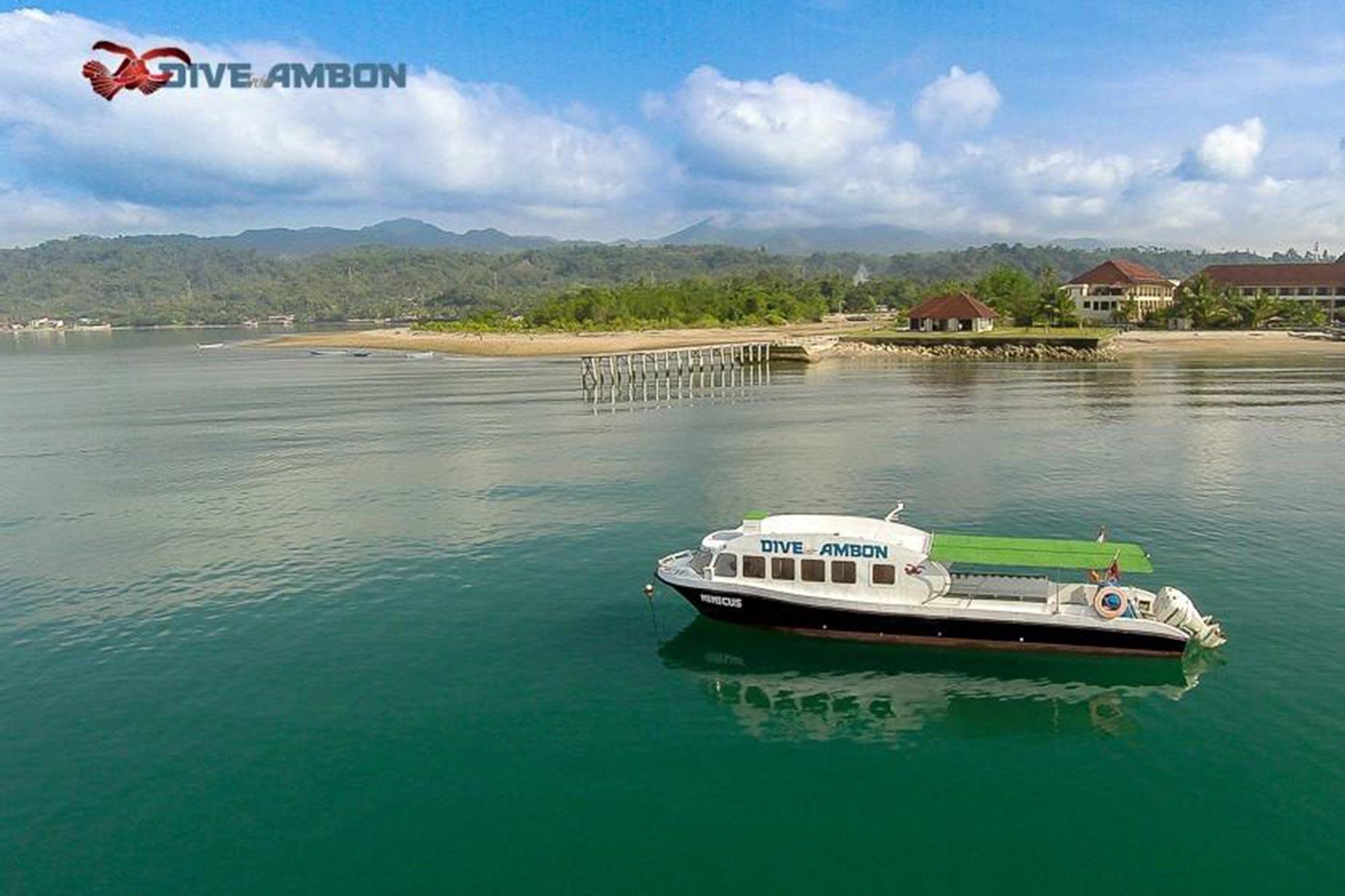 Dive-Into-Ambon