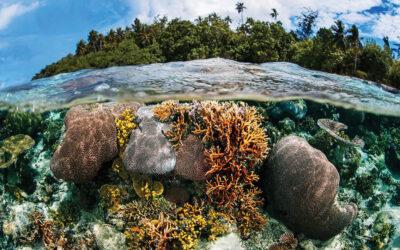 Gizo, The Solomon Islands