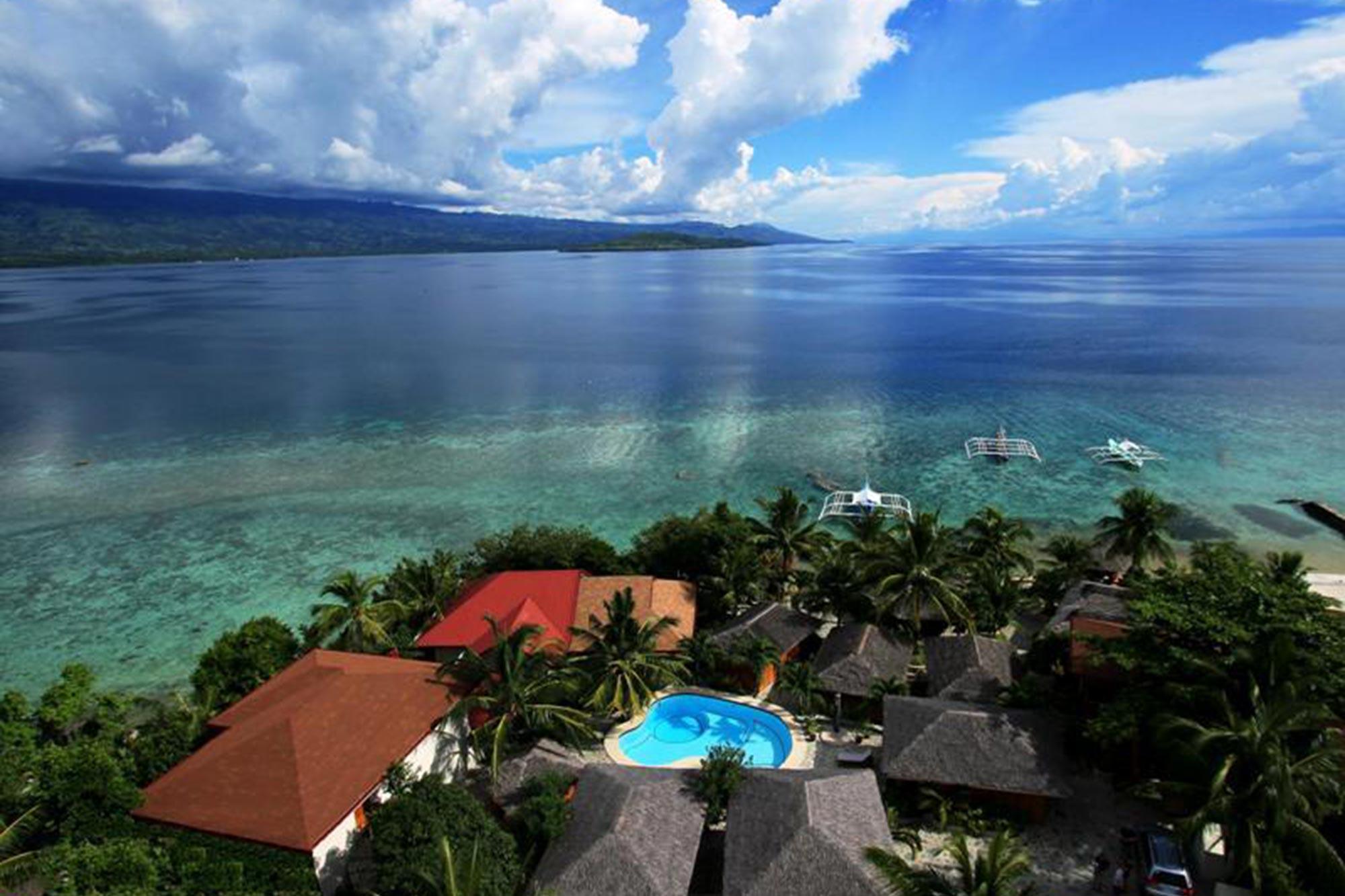 Dive travel bohol - Magic oceans dive resort ...