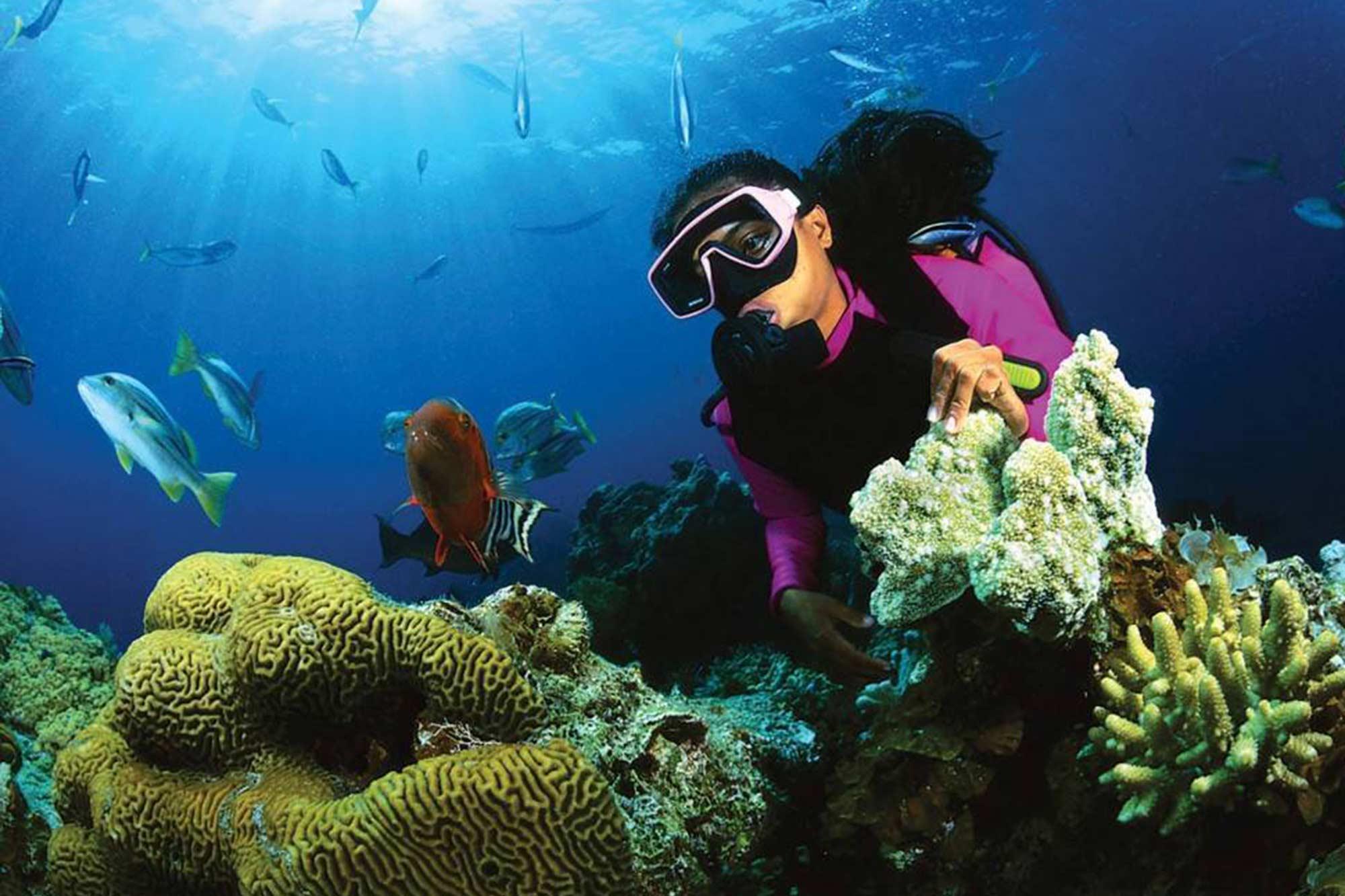 Sri-Lanka-Diving-Tours
