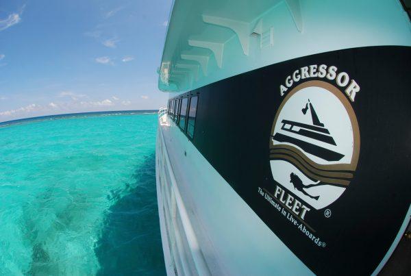 Aggressor Liveaboards Belize