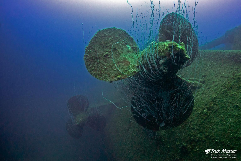 Bikini Atoll - Overwhelming!